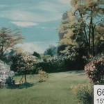 Backdrop 669 Summer Garden 15'X12'